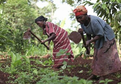 Boost the Agricultural Sector by Promoting Rural Resource Centres (RRCs)